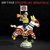 Revolution Come¿Revolution Go