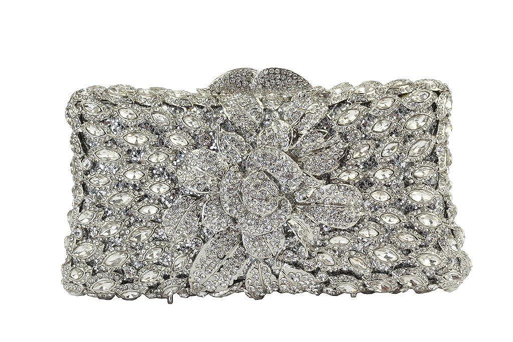 Yilongsheng Flor de las mujeres bolsos de embrague con piedras de cristal deslumbrante (plata): Amazon.es: Zapatos y complementos