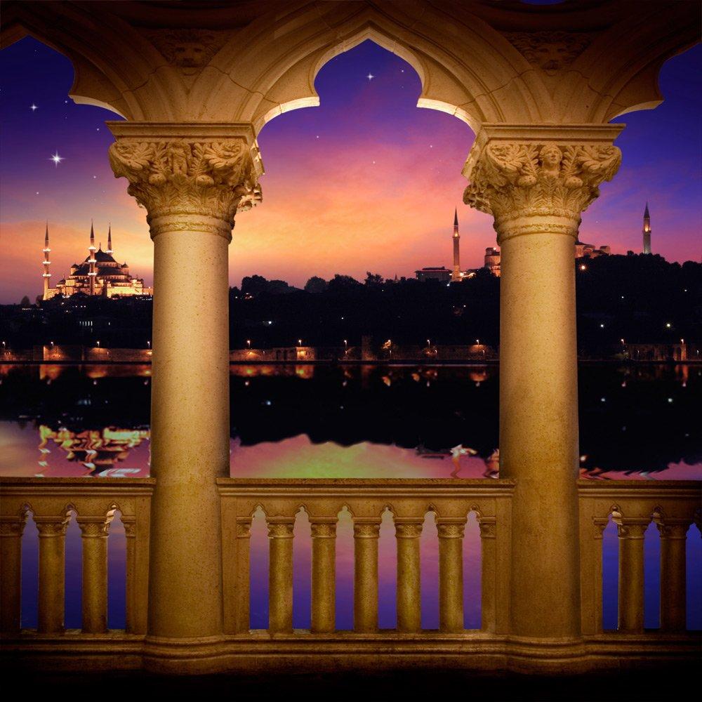 写真バックドロップ – Arabian Nights with Portico – 10 x 10 – 100 %シームレスなポリエステル   B00NVQHUSU