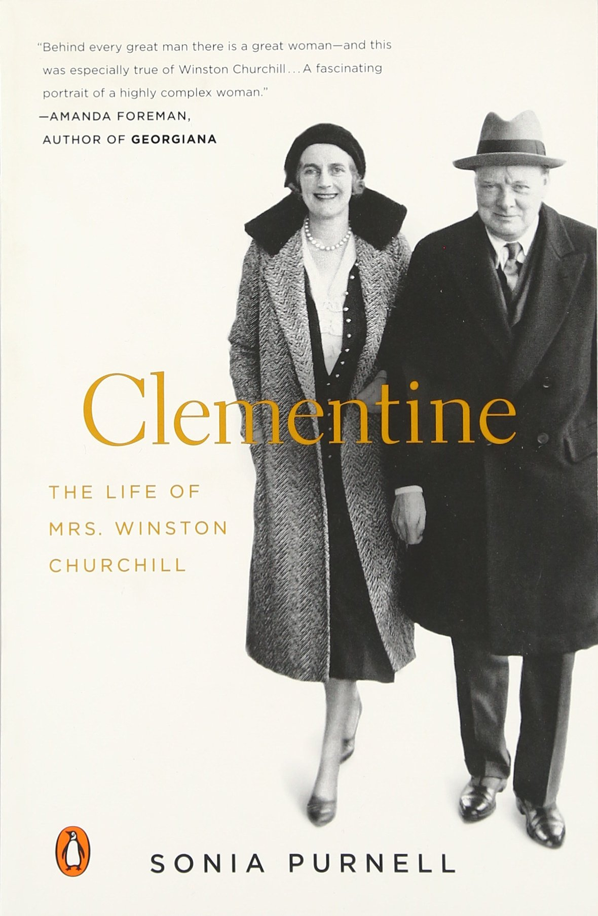 Clementine Life Mrs Winston Churchill