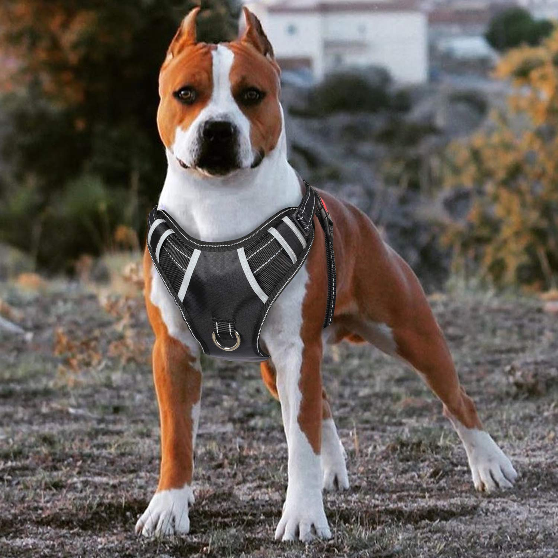 Big Dog Harness No Pull Adjustable Pet Reflective Oxford Soft Vest for Large Dogs Easy Control Harness (M, Black)