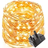 LE Waterproof 10m 100 LED Copper Wire Lights, Power Adapter Included, Fairy Starry String Lights, Warm White,Decorative Rope Lights for Christmas, Party, Wedding, Garden, Festival