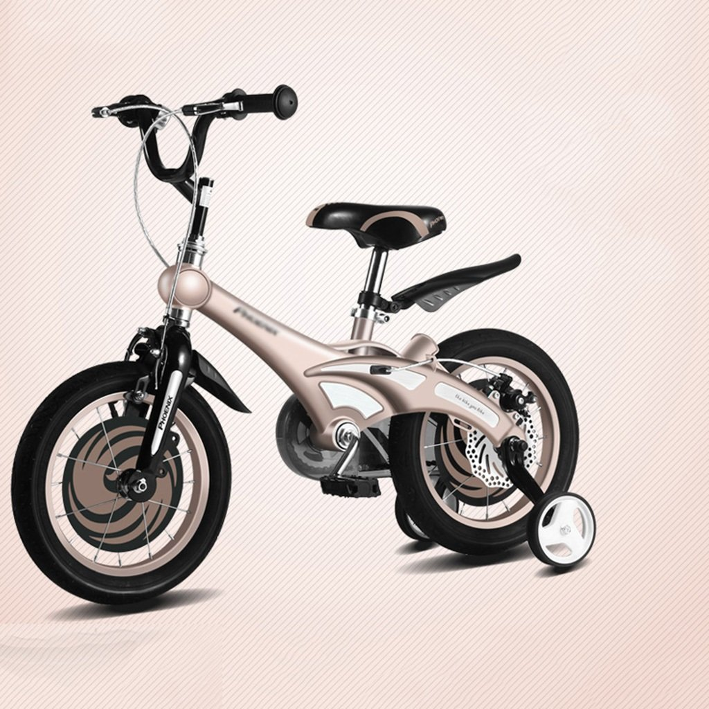 Gai Huaホーム子供用自転車子供の自転車マグネシウム合金フレーム12 /14 /16インチベビーBike 2 – 3-6 – 8年古い赤ちゃんベビーカー B07DQJVSVF 12 inches|ゴールド ゴールド 12 inches