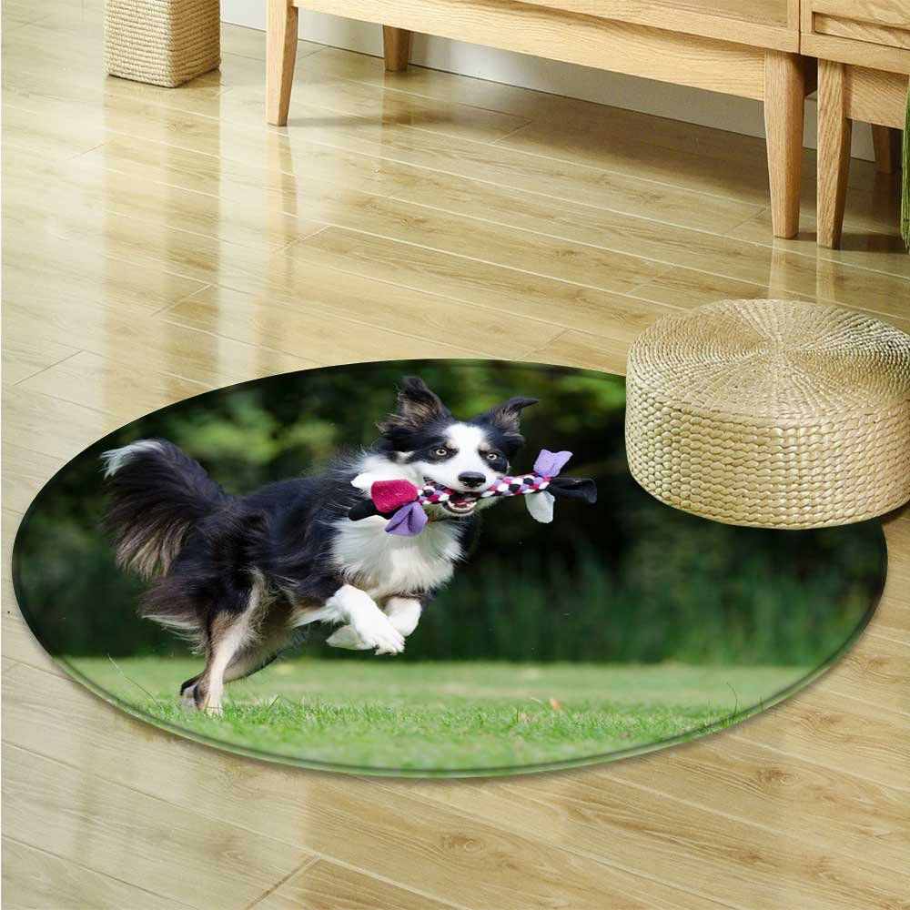 Dining Room Home Bedroom Carpet Floor Mat A happy shepherd dog with a toy Non Slip rug-Round 55''
