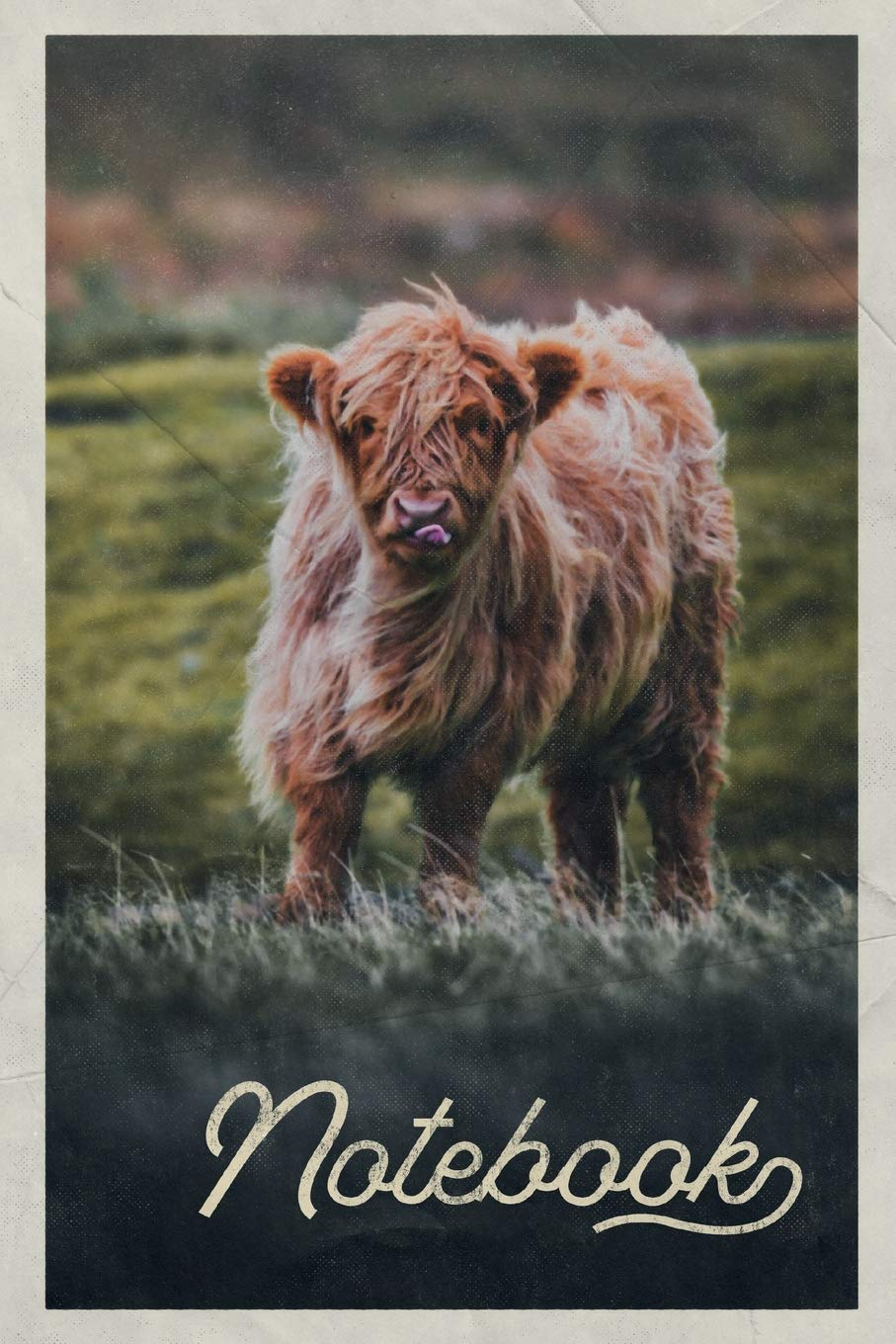 Notebook  Aberdeen Angus Cattle Excellent Composition Book Journal Diary For Men Women Teen And Kids Vintage Retro Design For Researching Where To See Highland Cows In Scotland