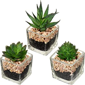 Artificial Succulents Small Fake Succulent in Glass Pots Mini Faux Potted Succulent Decor for Windowsills Bedroom Bathroom Shelf Home Office Set of 3