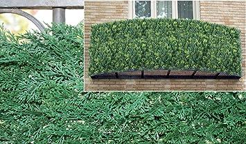 Arella - Malla seto artificial para dar sombra, siempre verde, ciprés, 1 x 1 m: Amazon.es: Bricolaje y herramientas