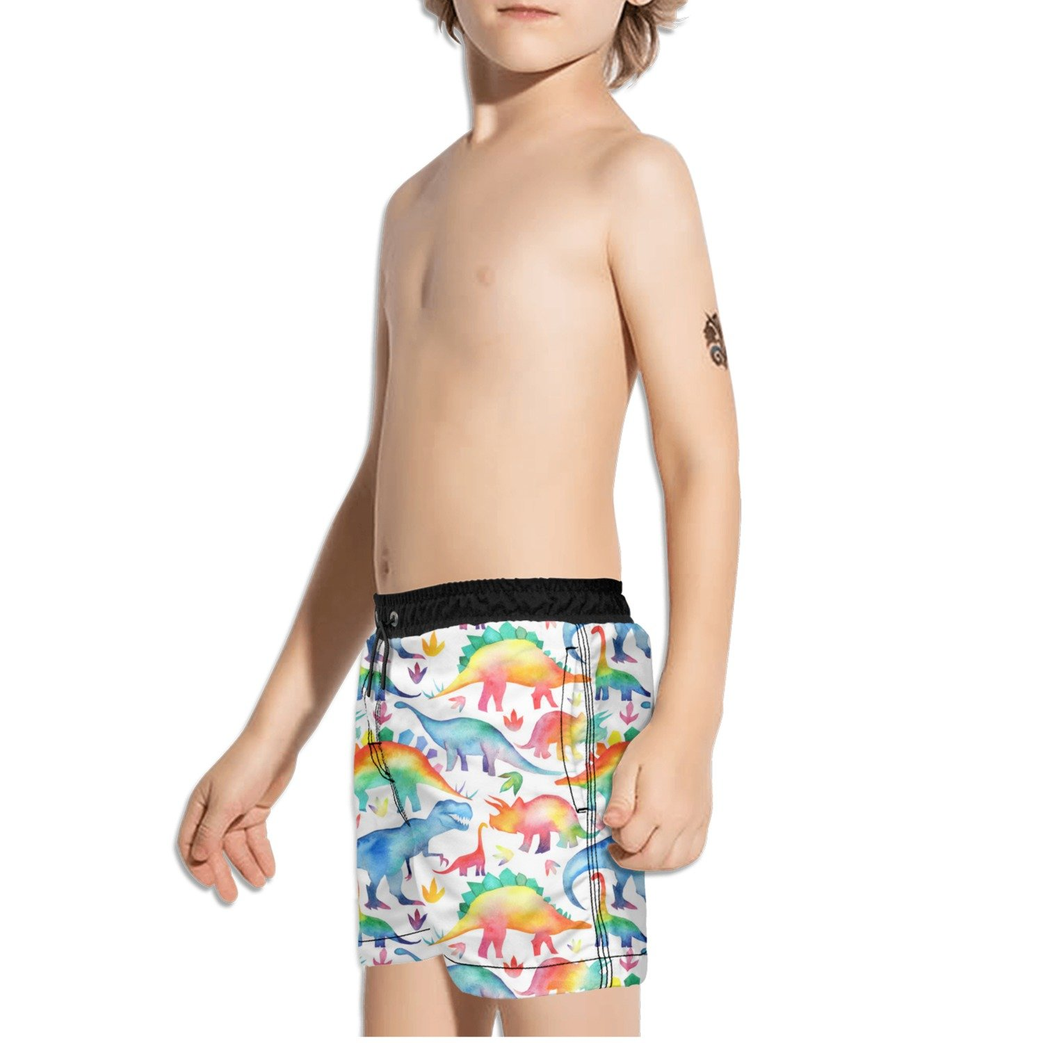 FullBo Rainbow Watercolour Dinosaurs Little Boys Short Swim Trunks Quick Dry Beach Shorts