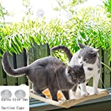 OTDEST Cat Window Perch Hammock Cat Bed Mounted Cat Sunshine Seat Durable Pet Perch with 6 Big Heavy Duty Suction Cups Cat Bed Holds Up to 60lbs
