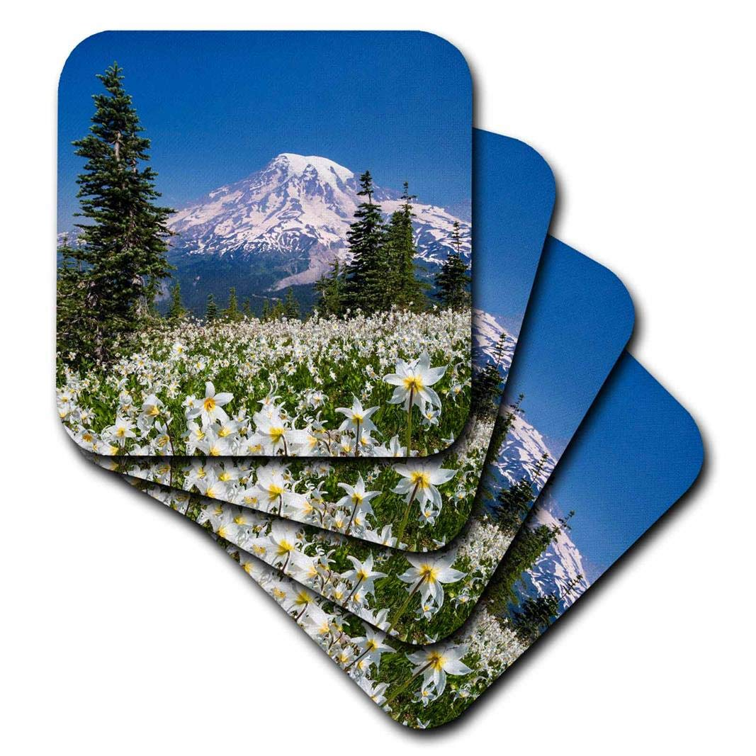 Set of 4 3dRose CST/_208008/_3 USA Washington Mount Rainier NP Avalanche Lilies /& Mount Rainier Ceramic Tile Coaster