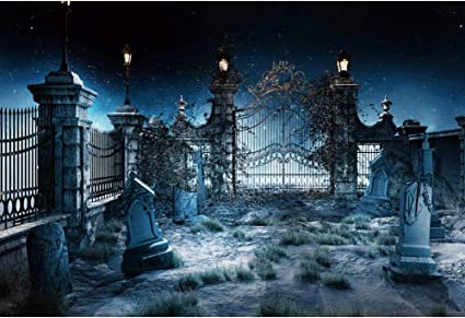 Oerju 3x2m Halloween Hintergrund Grabstein Friedhof Kamera
