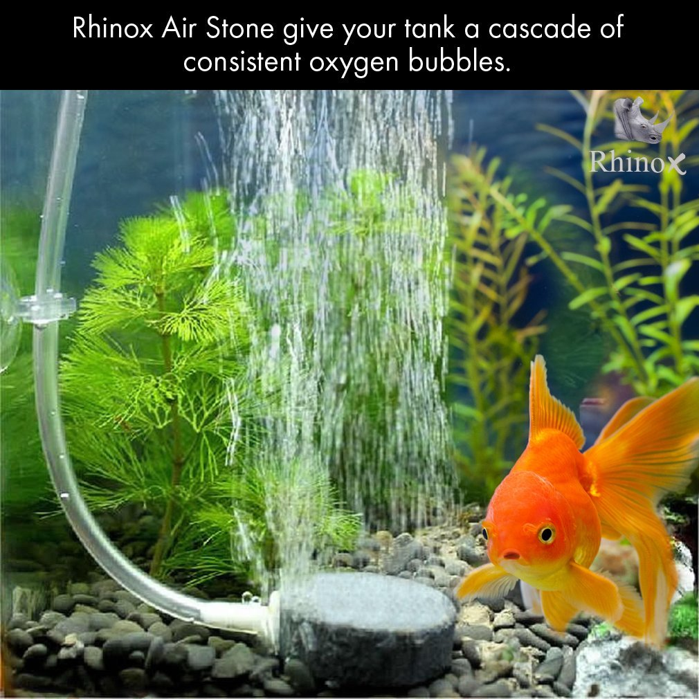 Rhinox Aerator Bubbler Set -- Additional oxygen promotes fish health - Increase water circulation - Unobtrusive, hides well in hydroponic or fish tank - Produce small bubbles as silent as in a library