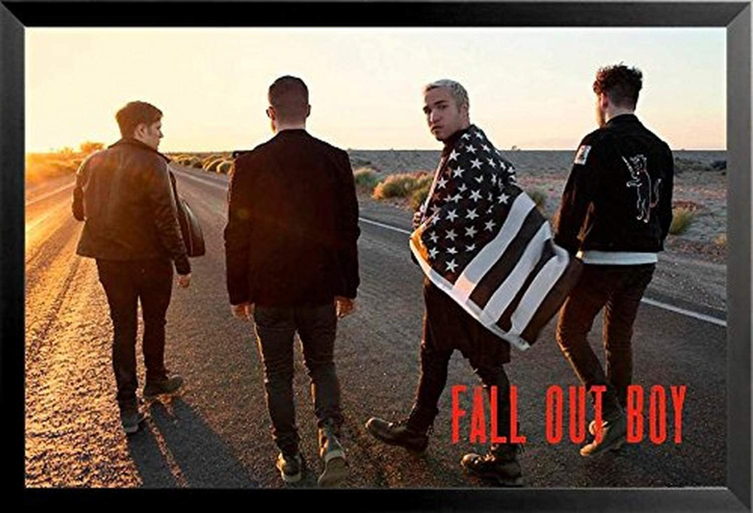 """Fall Out Boy poster wall art home decor photo print 24x24/"""" inches"""
