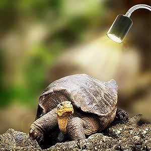 comtervi Reptiles lámpara calefactables Acuario Tortuga lámpara para Acuario iluminación 25W uva UVB con base larga 360° giratorio para Reptiles y Anfibios [Clase energética A +]