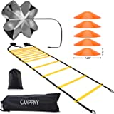 CANPPNY Speed Agility Training Kit—Includes Agility Ladder with Carrying Bag, 5 Disc Cones, Resistance Parachute.Use Equipmen