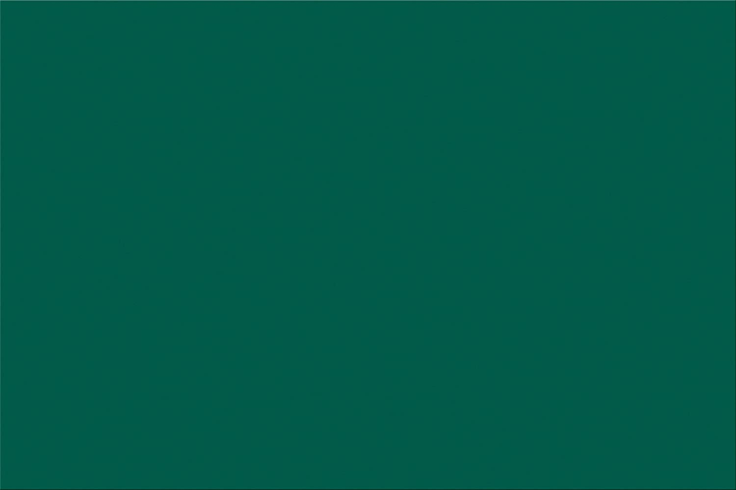 Pacon SunWorks Construction Paper, 12\' x 18\', 100-Count, Dark Green (7808) 12 x 18 Pacon Corp.