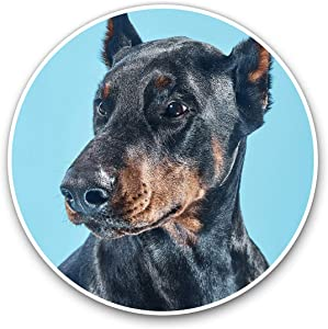 Awesome Vinyl Stickers (Set of 2) 10cm - Doberman Dog Portrait Puppy Fun Decals for Laptops,Tablets,Luggage,Scrap Booking,Fridges,Cool Gift #3240