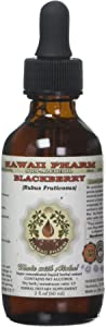 BlackBerry Alcohol-Free Liquid Extract, Organic BlackBerry (Rubus fruticosus) Dried Leaf Glycerite 2 oz