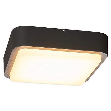 LED Lámparas de techo Maxine (Moderno) en Negro hecho de ...