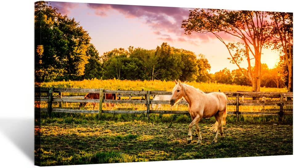 Kreative Arts - Large Size Horse of a Farm Canvas Prints Wall Art Picture Modern Sunset Landscape Wild Animal High Definition Print Painting for Hotel Wall Decor Ready to Hang 20x36inch