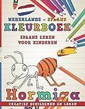 Kleurboek Nederlands - Spaans I Spaans leren voor kinderen I Creatief schilderen en leren (Talen leren)