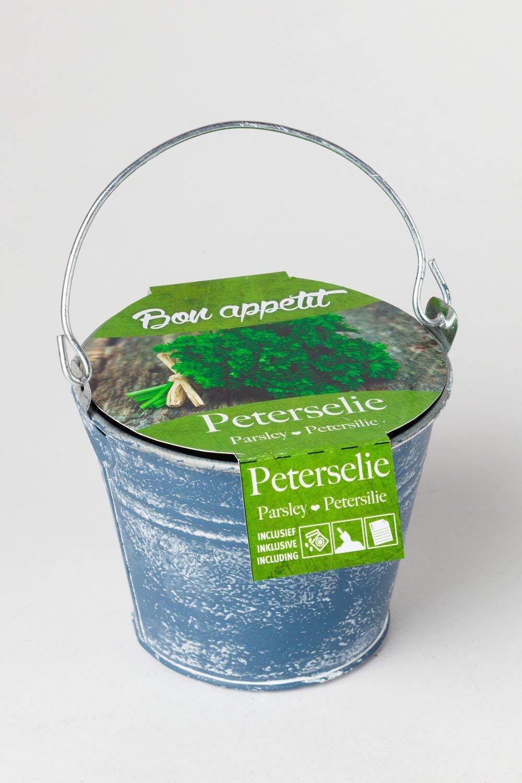 Petersilien Samen Zinkkübel lime Geschenkidee Garten Saatgut Pflanz-Set Erde von notrash2003®