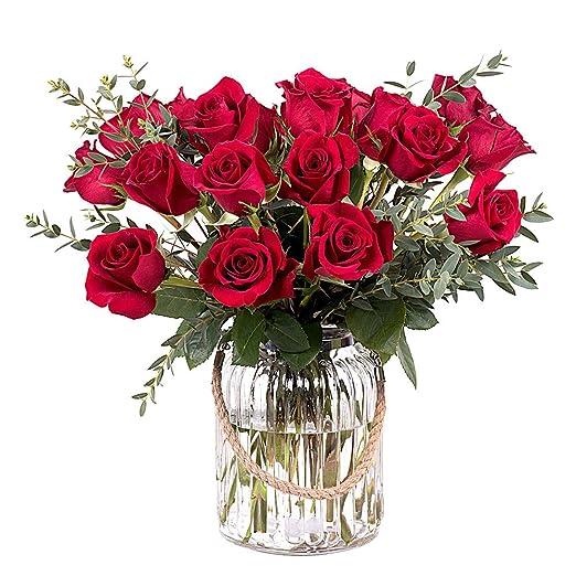 Flores Frescas Florachic - 20 Rosas Rojas sin jarrón - flores enviadas directamente del campo a tu casa: Amazon.es: Jardín