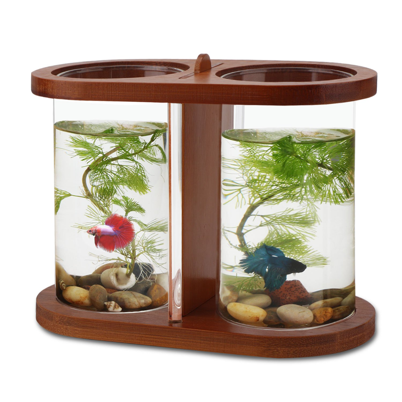 office desk aquarium. Office Fish Tank. Segarty Cool Design Desktop Glass Tank - Small Bowls With Dual Desk Aquarium I