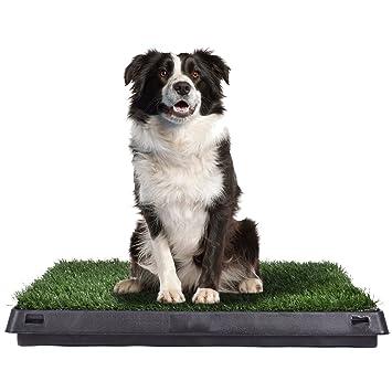 GYMAX - Alfombrilla para inodoro para mascotas (tamaño grande, 51 x 63 cm,