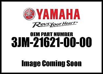3JM-21621-00 OEM YFS200 YAMAHA Flap