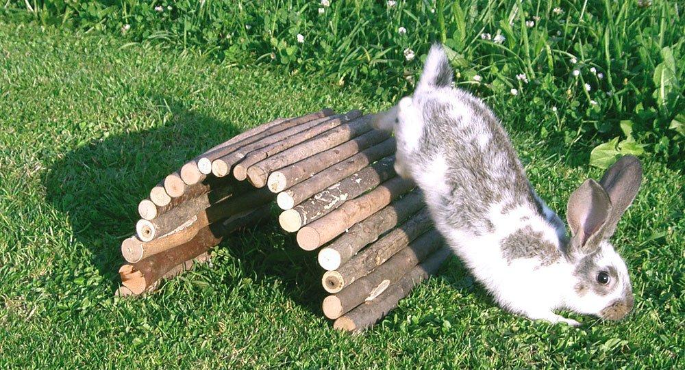 Kerbl Puente de madera 30 x 50 cm 84084