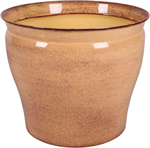 Robert Allen Home and Garden MPT01603 Metal Planter Flower Pot Avery Classic Ironstone, 12 Inch, Chamomile