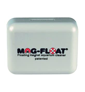 Algenmagnete Limpiador magnético Flotante para acuarios, tamaño Grande, 100490: Amazon.es: Productos para mascotas