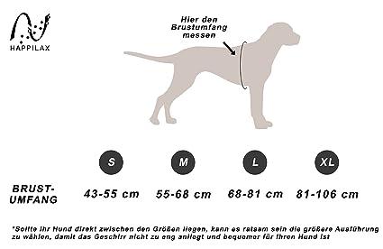 Happilax Arnés perro mediano, acolchado, reflectante y ajustable: Amazon.es: Productos para mascotas