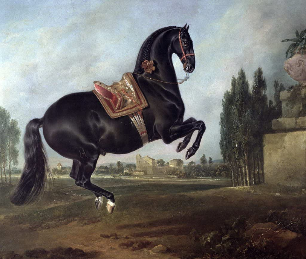 Kunst für Alle Impresión artística/Póster: Johann Georg Hamilton A Black Horse Performing The Courbette - Impresión, Foto, póster artístico, 70x60 cm