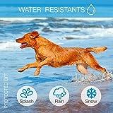 DogRook Bark Collar - Humane, No Shock Training