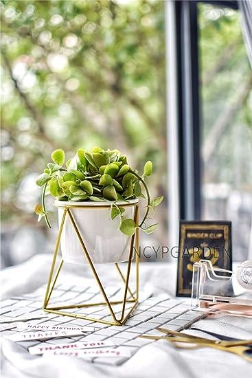 Amazon.com: Soporte para flores – Escritorio moderno, color ...