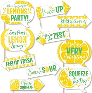 product image for Big Dot of Happiness Funny So Fresh - Lemon - Citrus Lemonade Party Photo Booth Props Kit - 10 Piece