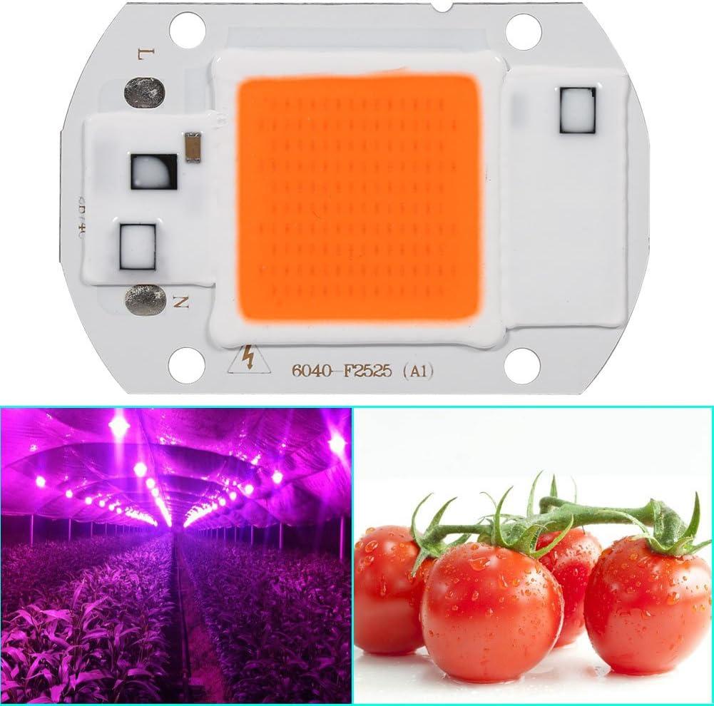 High Power 20W 30W 50W COB LED Grow Light Bulbs Full Spectrum AC 110V 220V