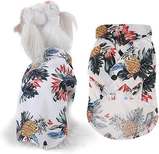 Camisas para Perros Ropa para Mascotas Ropa Linda de La Camiseta del Perrito Ropa de La Camiseta del Perro del Gato: Amazon.es: Productos para mascotas