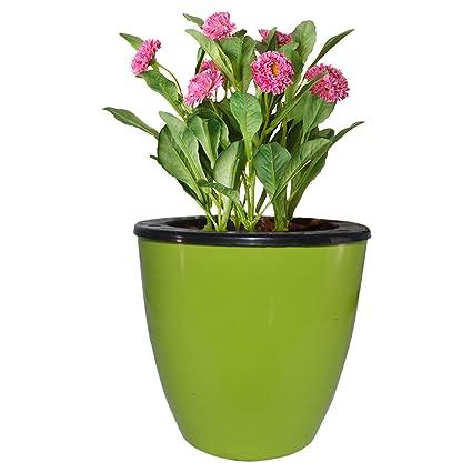 Eco365 6 Self Watering Decorative Pots (6 Pots)