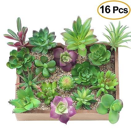 Kalolary Artificiale Succulente Piante-16 Confezioni Miste Unpotted Falsi  Succulente Piante da Fiore Molti Tipi per Interni/Esterni Fai da Te ...