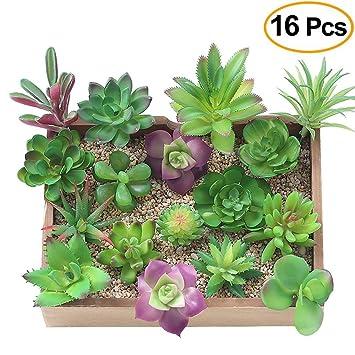 Plantas Suculentas Artificiales Kalolary 16 Paquetes Mixtos