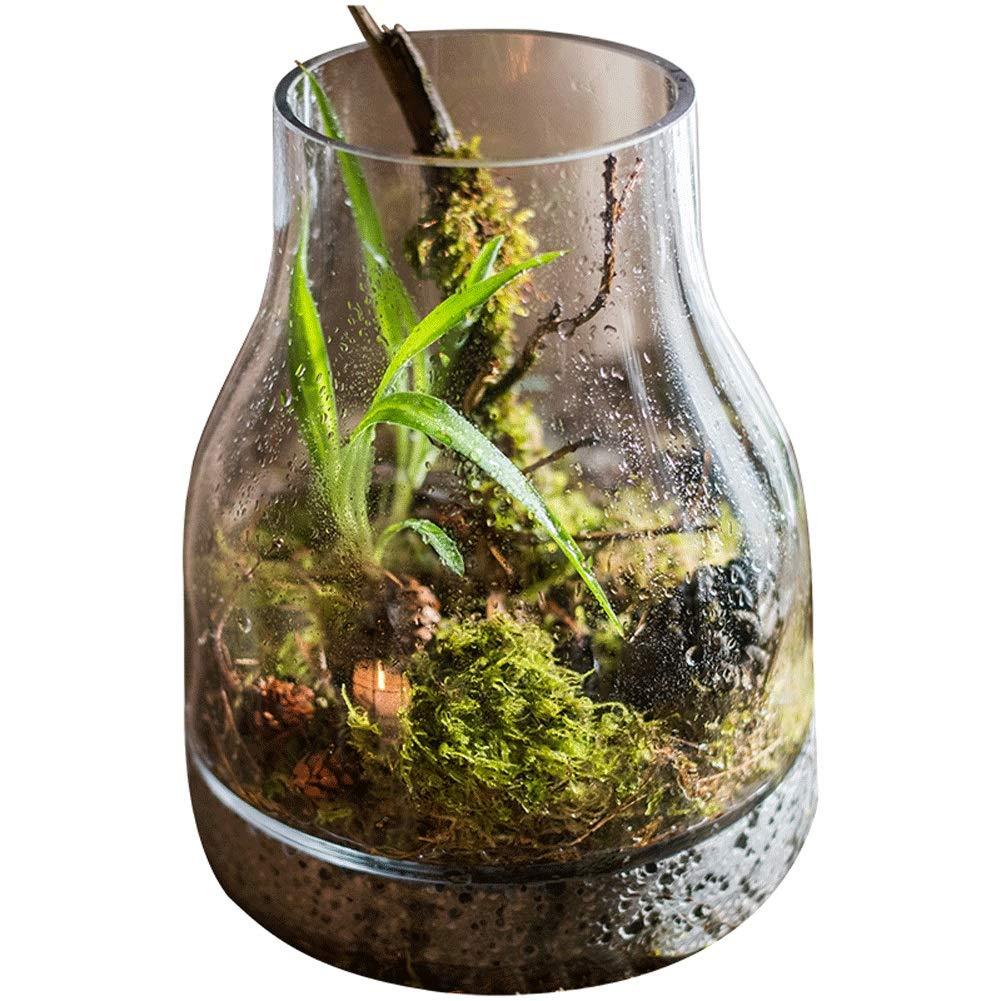 デザイナーガラス製品花瓶花マイクロ風景水槽造園シリンダー北欧ギフトデスクトップ地面花瓶 (Color : Clear) B07SHDM34Y Clear