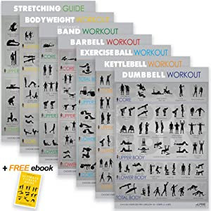 """7 Exercise Workout Gym Posters - 30x20"""" Laminated Fitness Charts"""