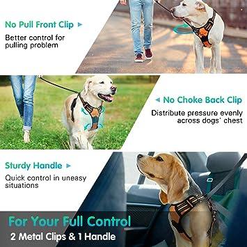 poitrine respirante rembourr/ée en maille r/églable Harnais pour chien sans traction avec cadeau 1 petite cloche gratuite meilleure formation de marche ext/érieure r/éfl/échissante /à contr/ôle facile