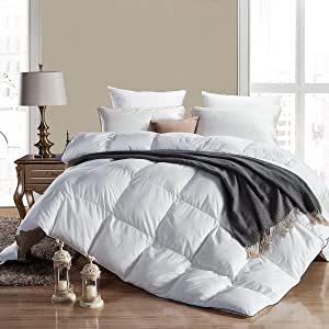 WENERSI Premium Goose Down Comforter Queen,All Seasons Duvet Insert,1200 Thread Count 100% Egyptian Cotton Fabric,Ultra-Soft&Down Proof,750 Fill Power Queen Size Comforter(Solid White,90x90inches)