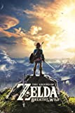 Amazon Price History for:The Legend of Zelda Breath of The Wild Hyrule Video Gaming Poster 24x36 inch