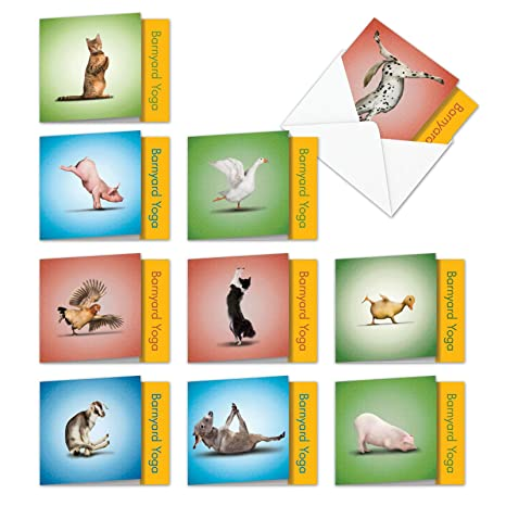 10 Assorted Barnyard Yoga Blank All Occasions Note Cards 4 x 5.12 inch w/Envelopes - Featuring Farm Animals Dancing in Challenging Yoga Poses - ...