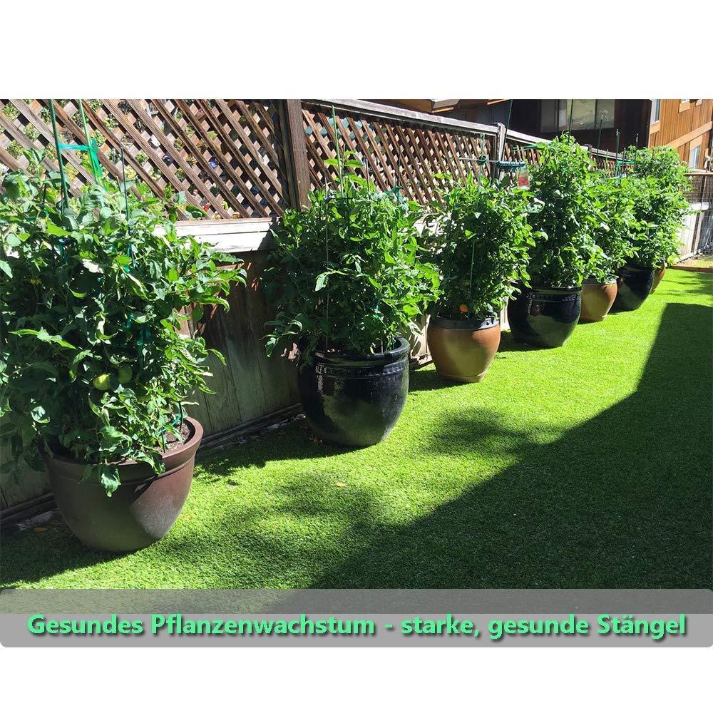 Betrothales Clips De Plantas Clips De Plantas De Jardín 20 Chic ...